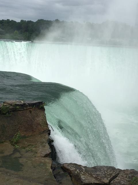 EACE Niagara